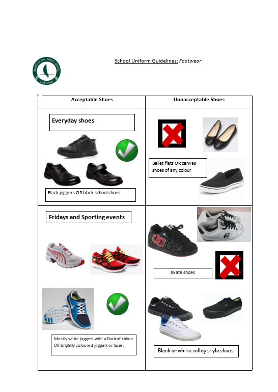 picture of shoe guidelines